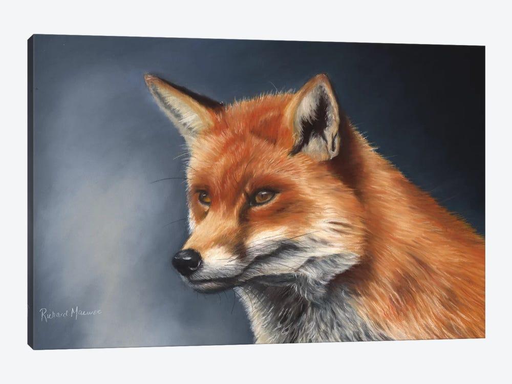 Red Fox by Richard Macwee 1-piece Canvas Art Print