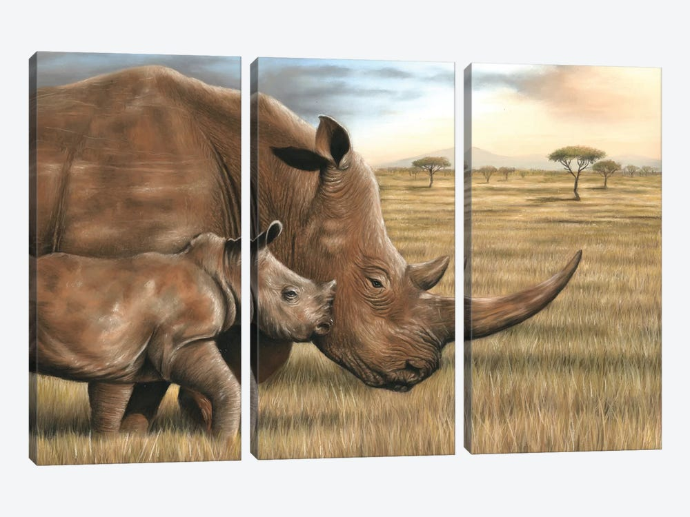 Rhino by Richard Macwee 3-piece Art Print
