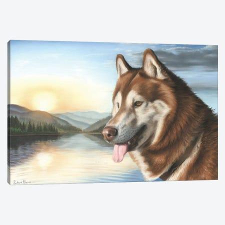 Siberian Husky Canvas Print #RMC49} by Richard Macwee Canvas Art Print