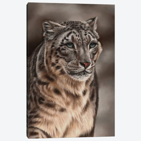 Snow Leopard Canvas Print #RMC51} by Richard Macwee Canvas Art