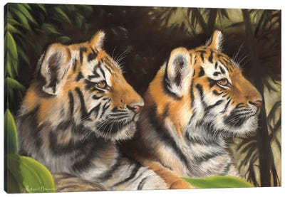 Tiger Cubs Canvas Art Print