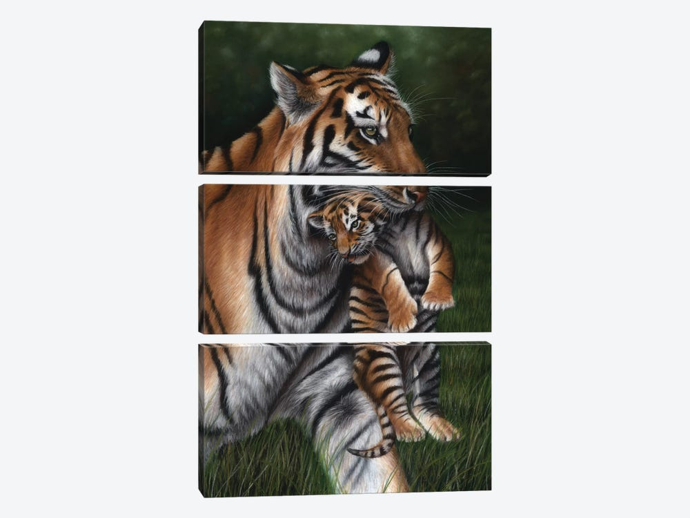 Tiger With Cub by Richard Macwee 3-piece Canvas Artwork