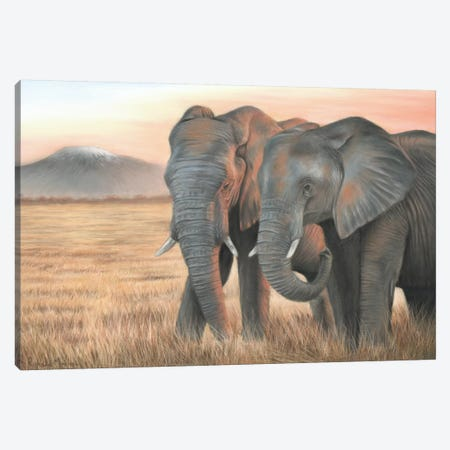 Two Elephants Canvas Print #RMC59} by Richard Macwee Canvas Artwork
