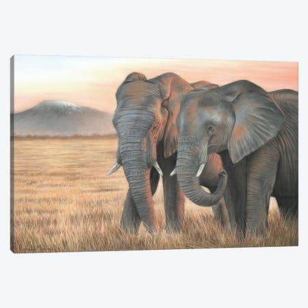 Two Elephants Canvas Print #RMC59} by Richard Macwee Canvas Artwork