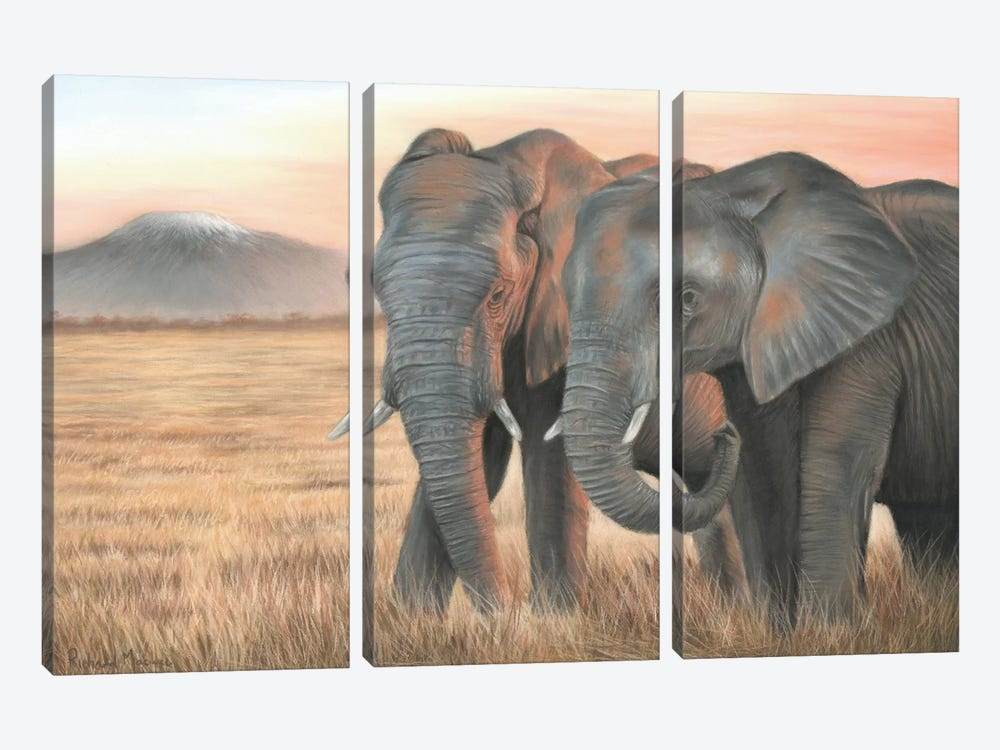 Two Elephants by Richard Macwee 3-piece Canvas Artwork