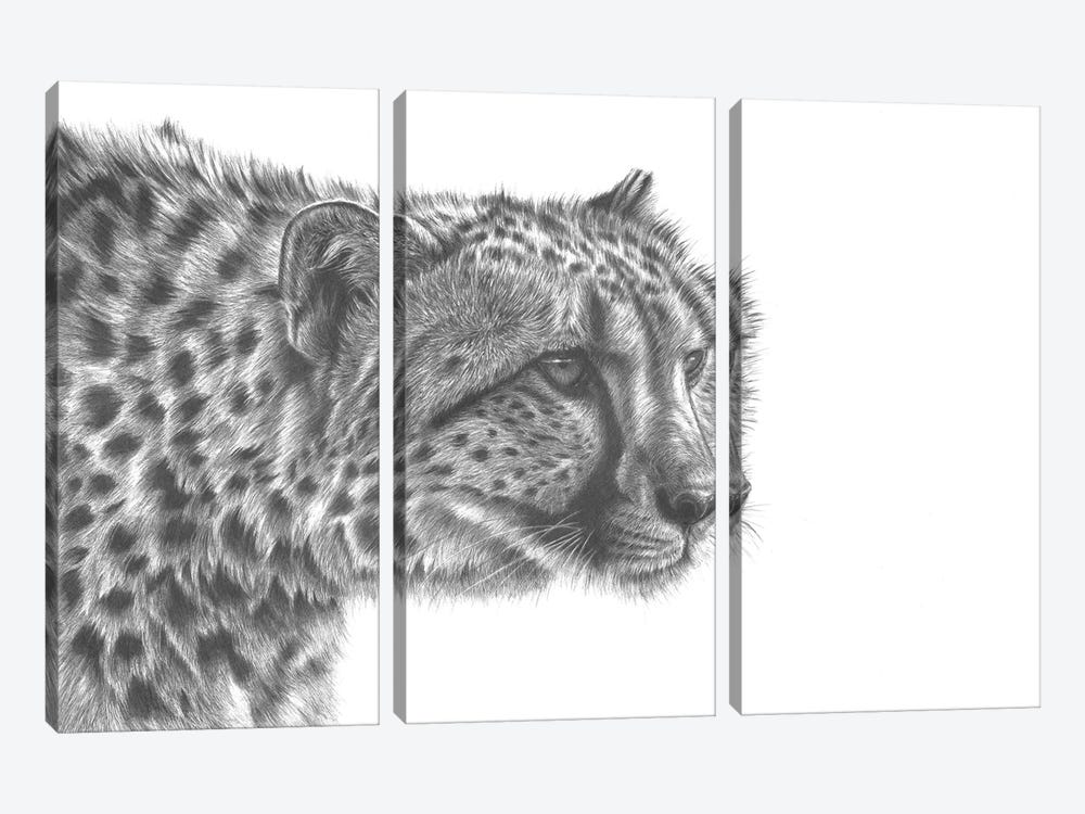 Cheetah Drawing by Richard Macwee 3-piece Canvas Art