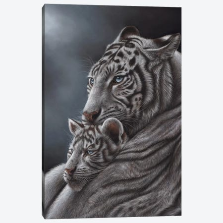 White Tiger 3-Piece Canvas #RMC61} by Richard Macwee Canvas Print