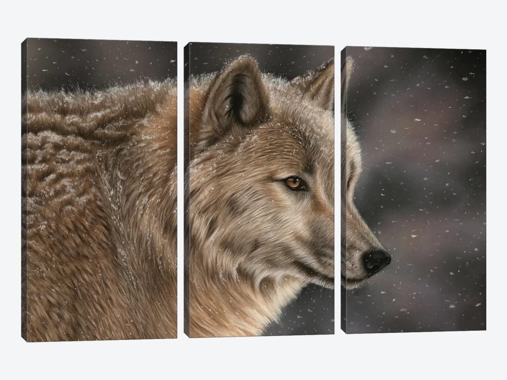 Wolf In Snow by Richard Macwee 3-piece Art Print