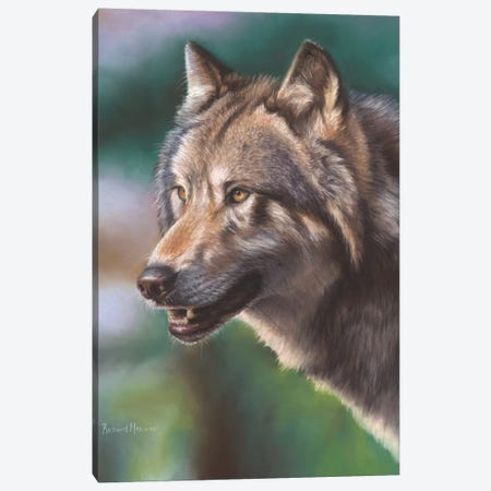 Wolf Portrait Canvas Print #RMC64} by Richard Macwee Canvas Wall Art