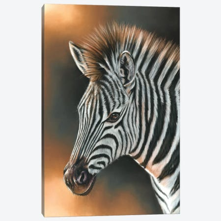 Zebra Canvas Print #RMC65} by Richard Macwee Canvas Artwork