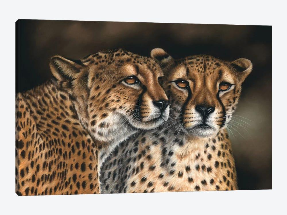 Cheetahs by Richard Macwee 1-piece Canvas Print
