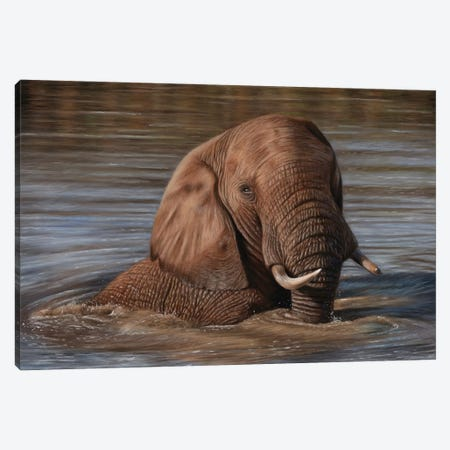 Elephant In Water Canvas Print #RMC70} by Richard Macwee Canvas Art