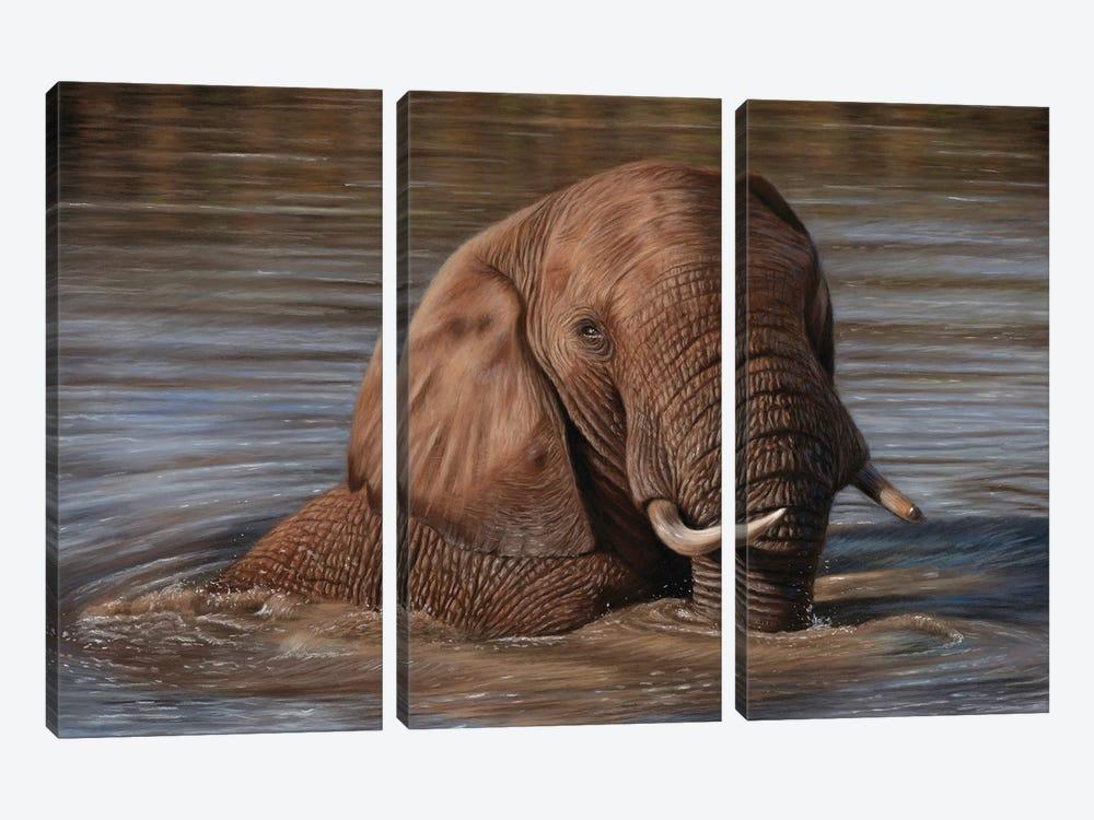 Elephant In Water by Richard Macwee 3-piece Art Print