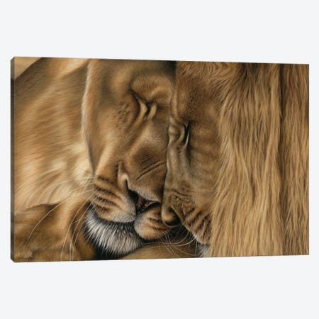 Two Lions Canvas Print #RMC74} by Richard Macwee Canvas Art Print