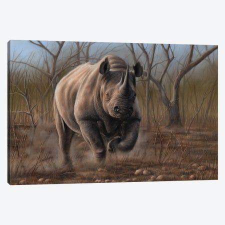 Charging Rhino Canvas Print #RMC76} by Richard Macwee Canvas Print