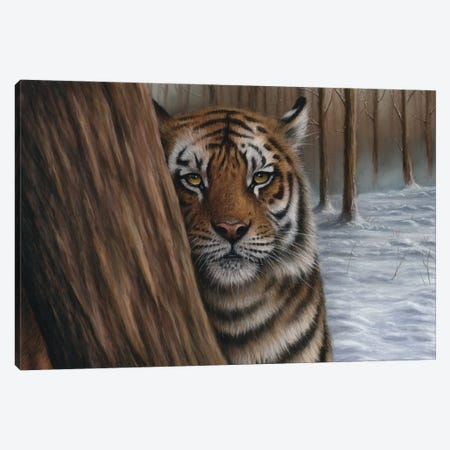 Siberian Tiger In A Forest Canvas Print #RMC77} by Richard Macwee Canvas Art Print