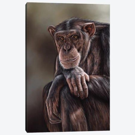 Chimpanzee Canvas Print #RMC7} by Richard Macwee Canvas Artwork