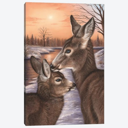 Deer And Fawn Canvas Print #RMC9} by Richard Macwee Canvas Art Print