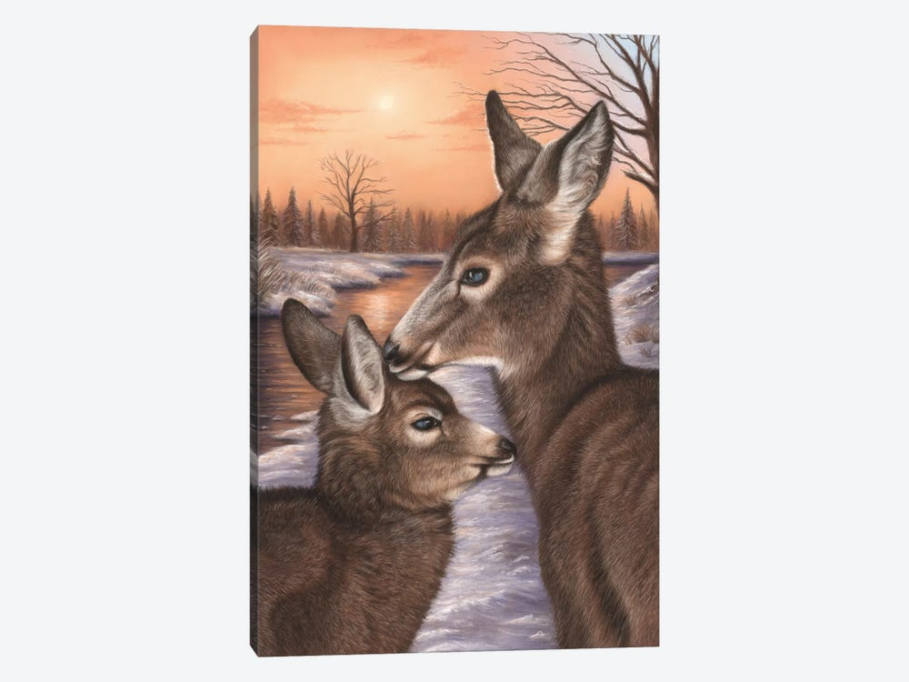 Deer And Fawn by Richard Macwee 1-piece Canvas Art