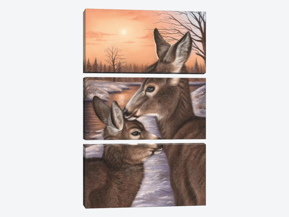 Deer And Fawn by Richard Macwee 3-piece Canvas Wall Art