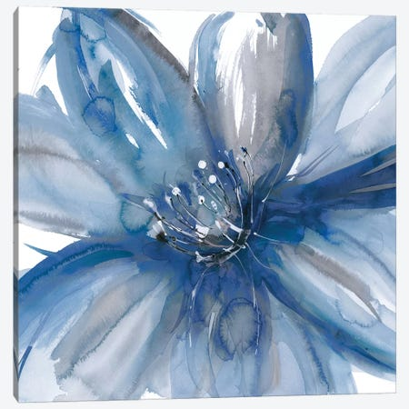 Blue Beauty I Canvas Print #RME2} by Rebecca Meyers Art Print
