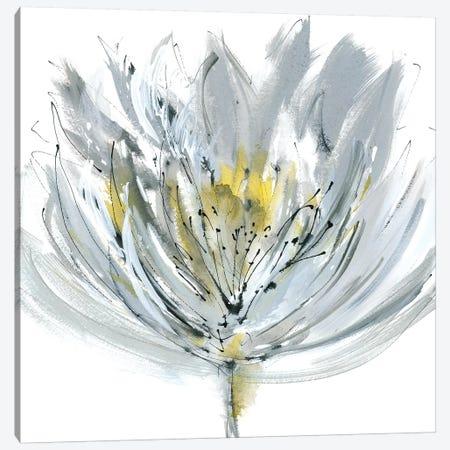 Le Grand Posy Canvas Print #RME4} by Rebecca Meyers Canvas Art