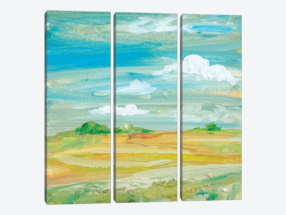 My Land III by Robin Maria 3-piece Canvas Artwork