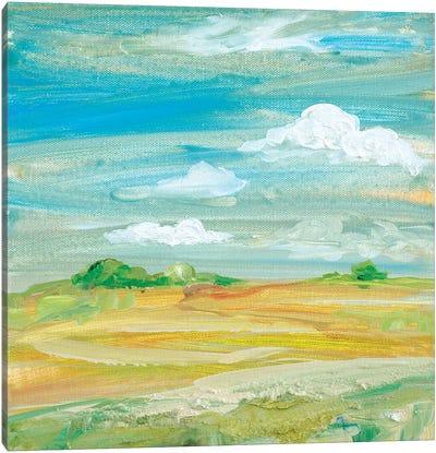 My Land III Canvas Art Print