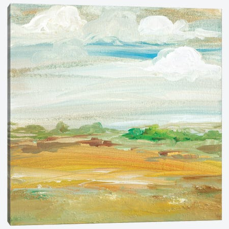 My Land IV Canvas Print #RMR25} by Robin Maria Art Print