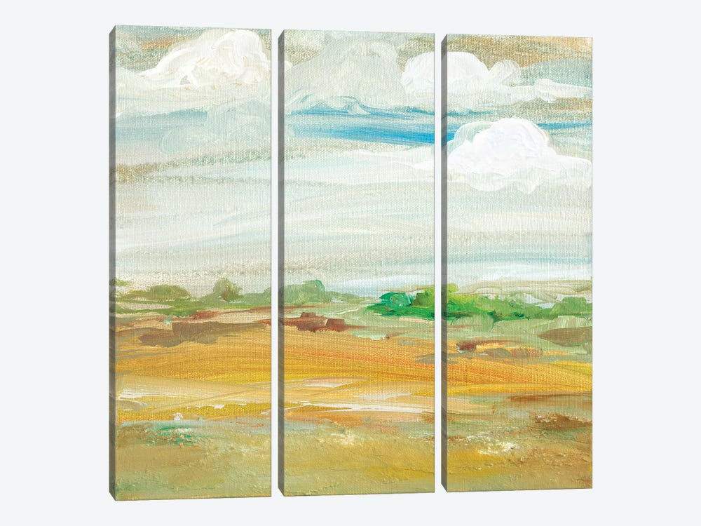 My Land IV by Robin Maria 3-piece Art Print