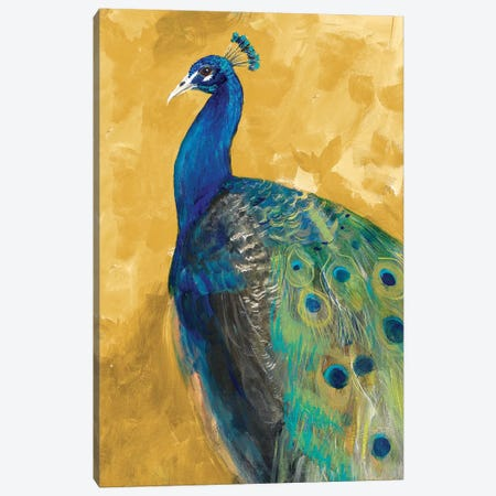 Royal Plume on Gold Canvas Print #RMR29} by Robin Maria Canvas Artwork