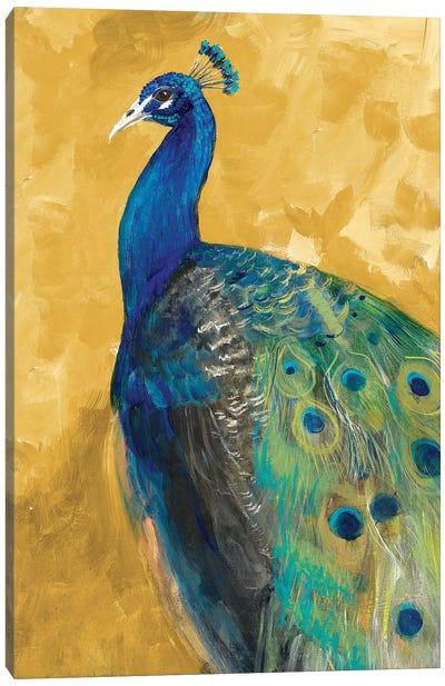 Royal Plume on Gold Canvas Art Print
