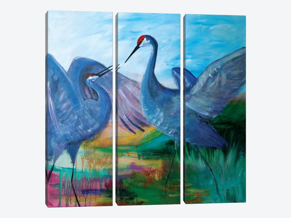 Sandhill Cranes by Robin Maria 3-piece Canvas Artwork