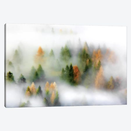 Autumn Dream Canvas Print #RMS1} by Kristjan Rems Canvas Art