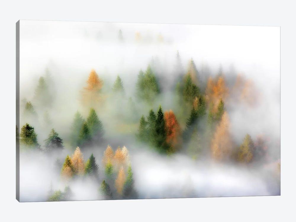 Autumn Dream by Kristjan Rems 1-piece Canvas Artwork