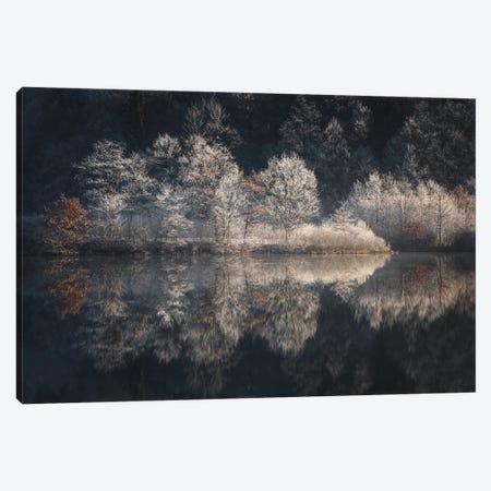 Morning Light Canvas Print #RMS2} by Kristjan Rems Canvas Artwork