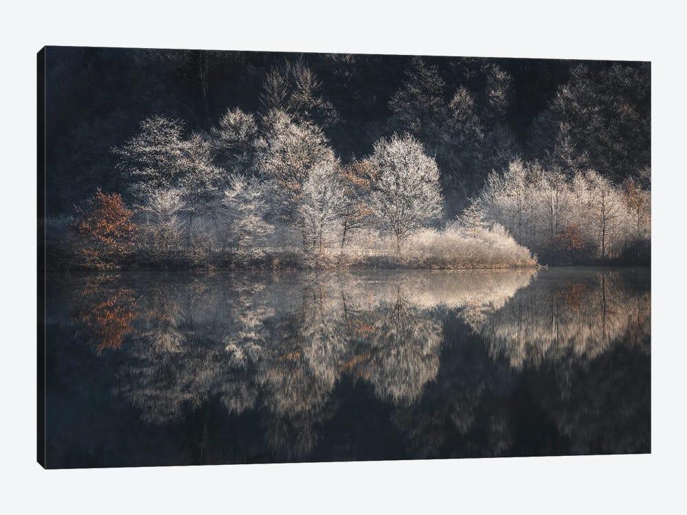 Morning Light by Kristjan Rems 1-piece Canvas Print