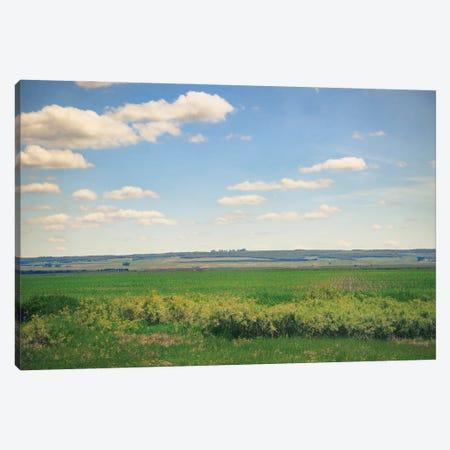 The Fields Canvas Print #RMU131} by Roberta Murray Art Print