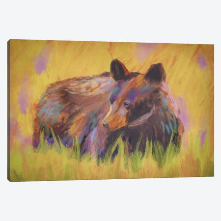 Meadow Bear Canvas Print #RMU13} by Roberta Murray Canvas Artwork