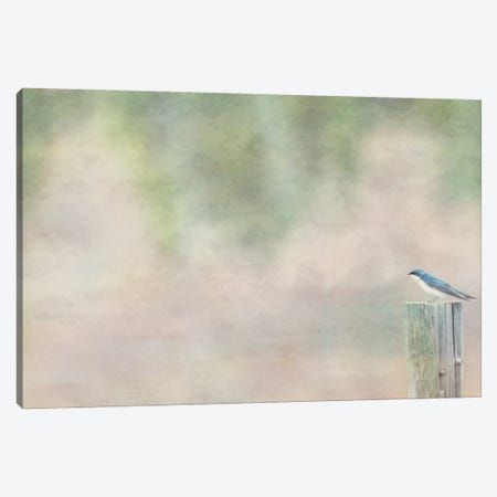 Domains Canvas Print #RMU141} by Roberta Murray Canvas Art