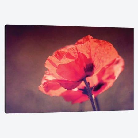 In Rememberance Canvas Print #RMU142} by Roberta Murray Canvas Art