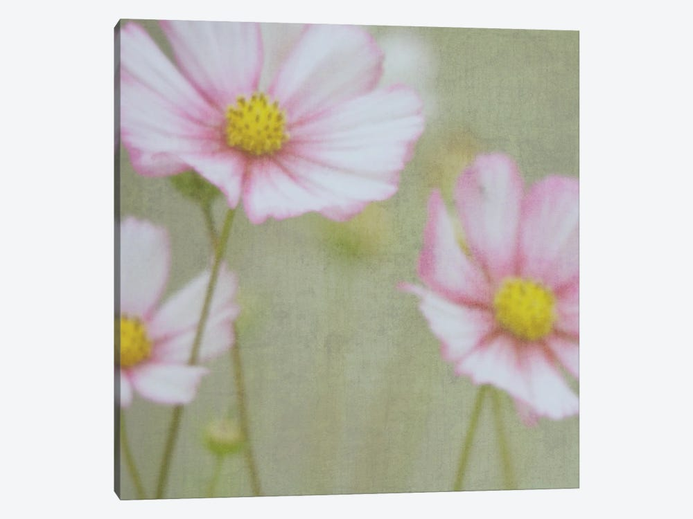 Intuition by Roberta Murray 1-piece Canvas Wall Art