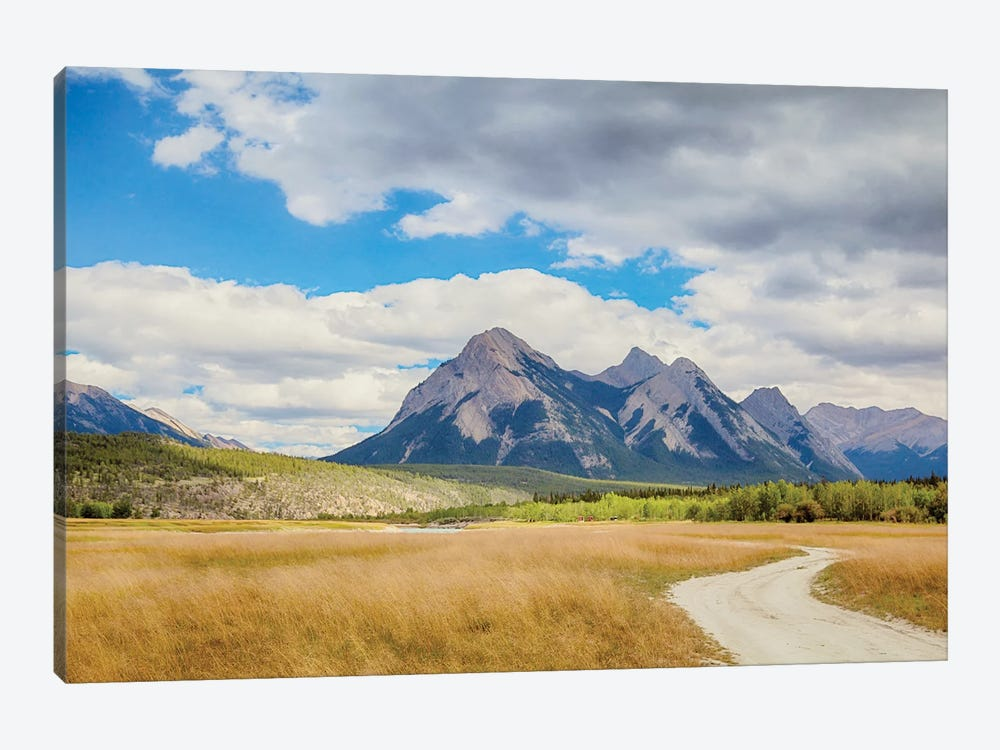 Kootenay Plains by Roberta Murray 1-piece Art Print