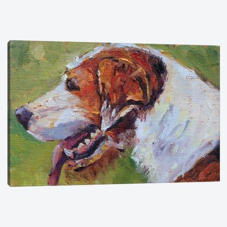 Eager Beaver Foxhound Canvas Print #RMU153} by Roberta Murray Art Print