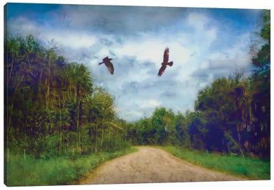 Follow Me Canvas Art Print