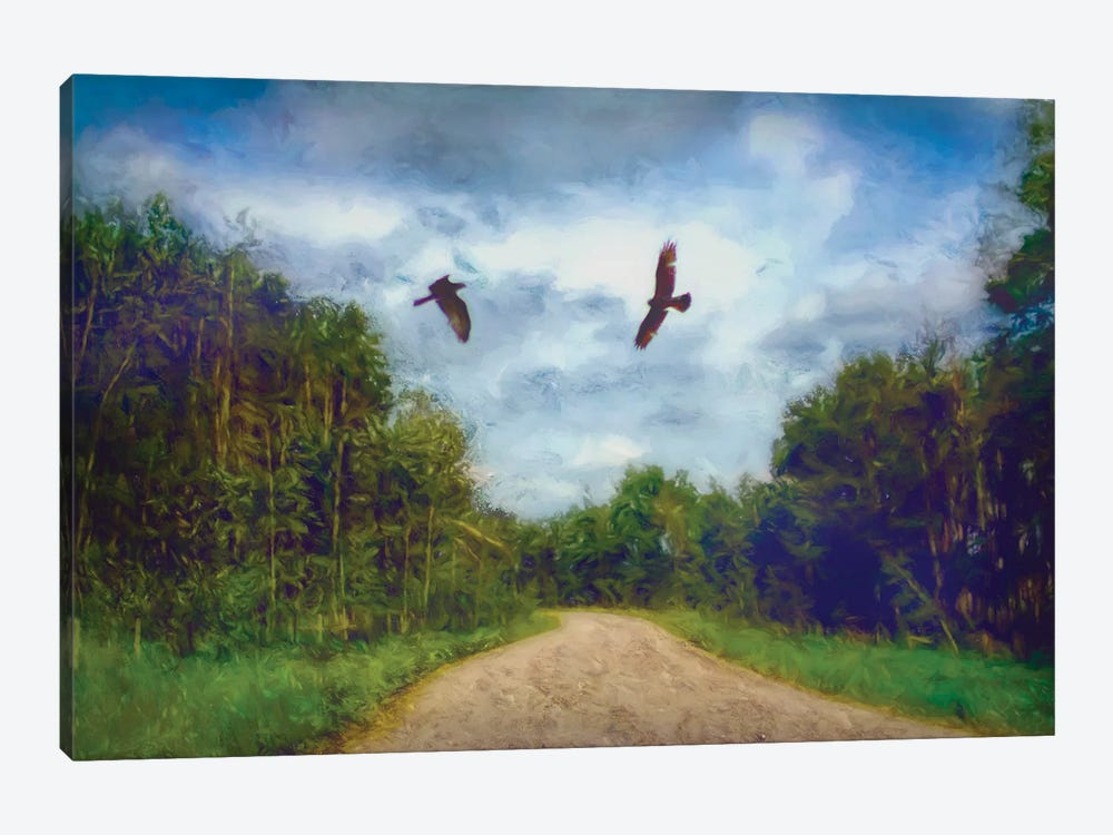Follow Me by Roberta Murray 1-piece Canvas Print