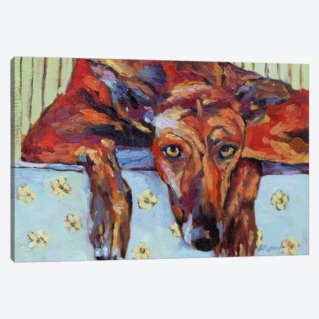 Lauren The Greyhound Canvas Print #RMU194} by Roberta Murray Canvas Artwork