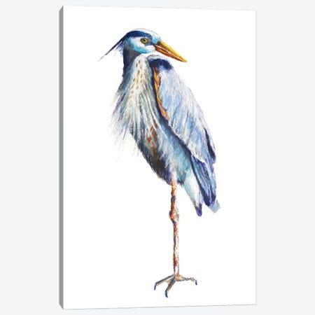 Great Blue Heron Canvas Print #RMU199} by Roberta Murray Canvas Art Print