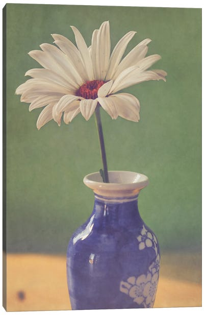 Daisy In Vase Canvas Art Print