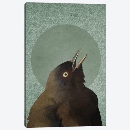 Blackbird Canvas Print #RMU210} by Roberta Murray Canvas Artwork